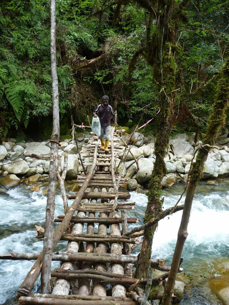 Log bridge crossings in the Madang Province