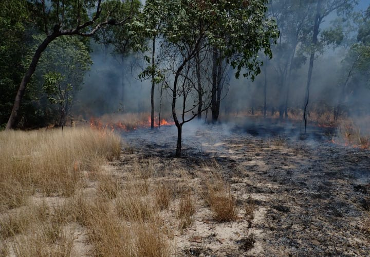 Traditional burning on Mandingalbay Yidinji Lands, Wet Tropics